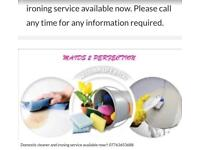 Domestic cleaner and ironing service available now !1