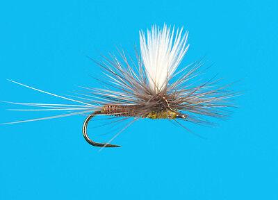 24 Artflies Fish PED Sulphur Hatch Dry Fly Assortment ~ Choose Hook Sizes ~