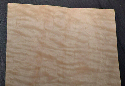 Curly Maple Wood Veneer Sheets 5.5 X 37 Inches 142nd 7636-35