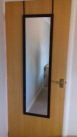 mirror for door