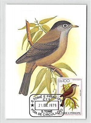 S.TOME MK 1979 VÖGEL TRAUERBRILLENVOGEL BIRDS CARTE MAXIMUM CARD MC CM /m278