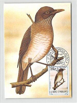 S.TOME MK 1983 VÖGEL SAO-TOME-DROSSEL BIRDS CARTE MAXIMUM CARD MC CM /m295