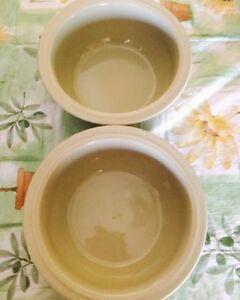 Two Ceramic dog bowls