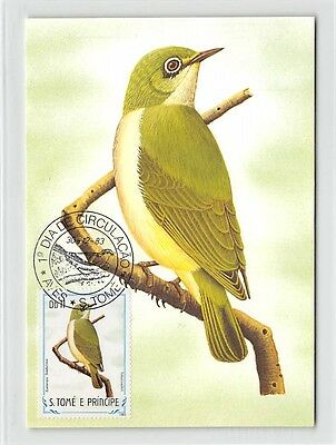 S.TOME MK 1983 VÖGEL FAHLBRILLENVOGEL BIRDS CARTE MAXIMUM CARD MC CM /m291