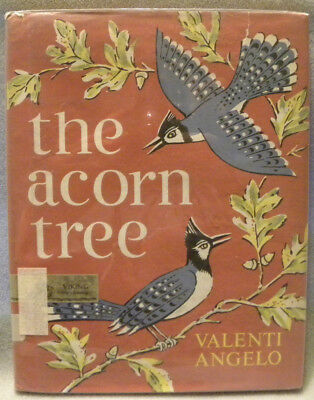 """The Acorn Tree"" Story and Pictures by Valenti Angelo, HC/DJ, 1966 Viking Press"