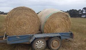 Hay bales big rounds Melton Melton Area Preview