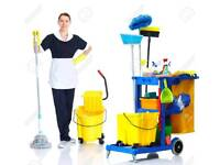 Professional Cleaner< only £12 per hr>Satisfaction Guaranteed*****