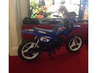 Kids Yamaha 2015 pw50 (genuine) not ktm
