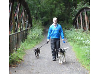 Dalmore Dog Services - Dog Walker, Let outs and Cat Visits
