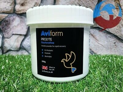AVIFORM PROLYTE 250g PIGEONS BIRDS PROBIOTIC ELECTROLYTE RECOVERY RACING ENERGY