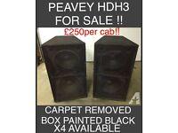 """PEAVEY HDH3 double 18"""" bass bins"""