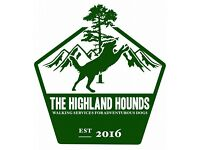 The Highland Hounds - Dog Walking and Services, Polkemmet Country Park