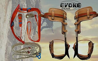 Tree Climbing Spike Set Pole Climbing Spurs Climber Adjustable With Harness Kit