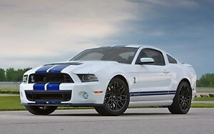 LF 2013-2014 mustang shelby GT 500