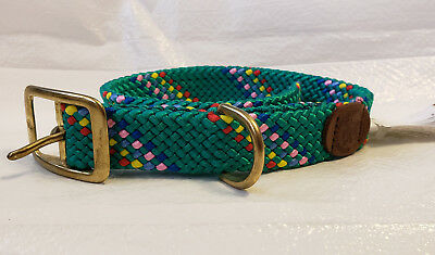 Double Braided Nylon Dog Collar with Brass Buckle, Green Confetti  18in. long