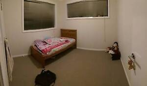 rooms for rent 150/week Campbelltown Campbelltown Area Preview