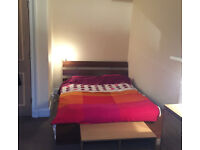 Room available in central Edinburgh flat May-June