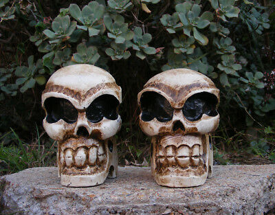 Skull Skeleton Head Wood Carving Statue Pirate Man Cave Tiki Bar Set of 2 - Skeleton Heads