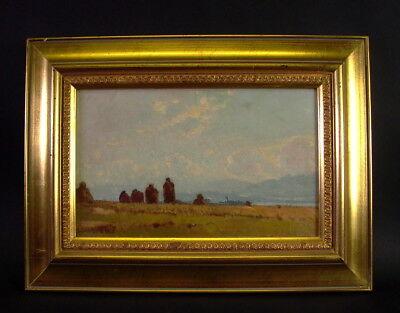 Heinrich DEUCHERT (1840-1923) - Chiemsee Landschaft bei Breitbrunn 1873