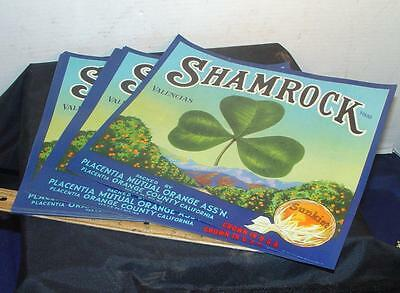 25 Large Shamrock w/ Clover Leaf Sunkist Oranges Crate Fruit Labels Placentia