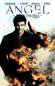 Angel After the Fall TPB (2009-2011 IDW) #4-REP NM
