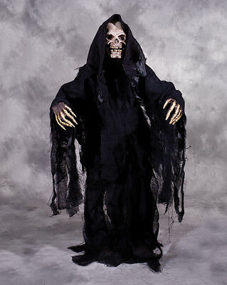 Grim Reaper Undead Skeleton Adult Halloween Costume Mask Gloves Robe up to XXL