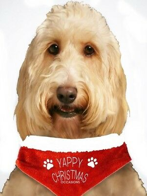 Yappy Christmas Pet Bandana Father Santa Paws Pet Fancy Dress Outfit For Dogs