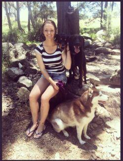 Dog walking and training Varsity Lakes - qualified
