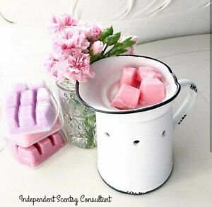Scentsy Spring/Summer catalogue is available!