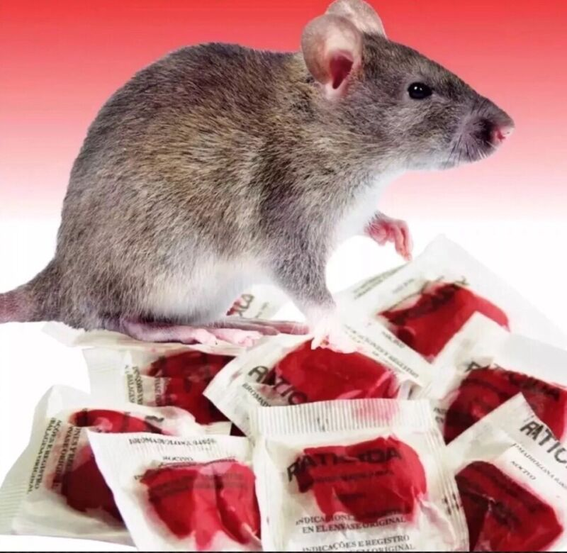 This Stuff Really Works 10 Packs / 100 Gram Package Rodent Rat Mouse Bait Poison