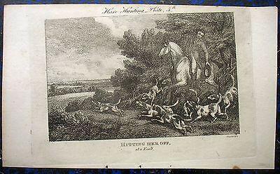 JÄGER mit HUNDEMEUTE, Jagdhunde. Orig. Kupferstich HOWITT, 1810
