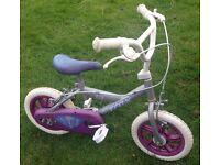 Trax 12' bike