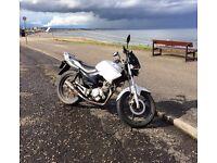 Yamaha YBR 125, 125cc Learner Bike