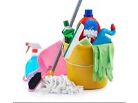 Domestic cleaner in Portsmouth & Southsea