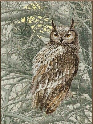 "Riolis 0038 PT Eagle Owl Counted Cross Stitch Kit, 15.75x11.75"" zweigart 14ct. for sale  Shipping to Canada"