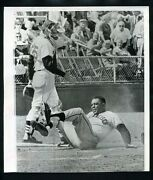 Willie Mays Press Photo