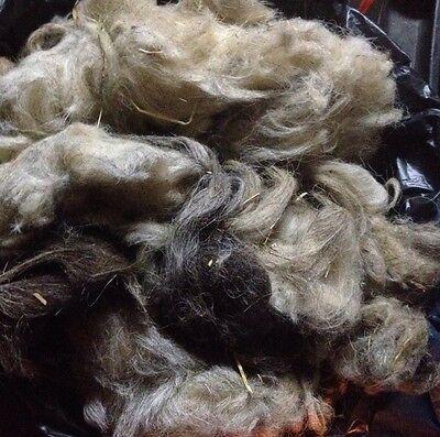 Rohwolle Schafwolle Von Heidschnucken zum Basteln, Filzen