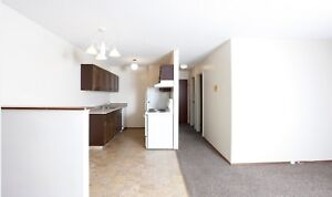 Beautiful, Pet Friendly 2 Bedroom Apartment Available!