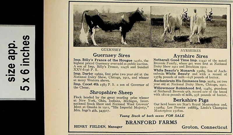 1912 Branford Farms Cattle Livestock Sale Vintage Print Ad 5543