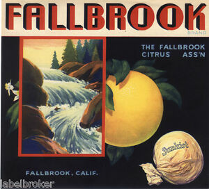 ORANGE-CRATE-LABEL-VINTAGE-SAN-DIEGO-FALLBROOK-GRAPEFRUIT-NOT-LEMON
