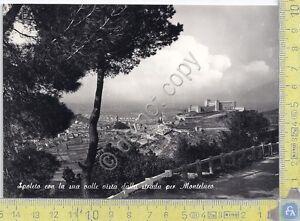 Cartolina-Postcard-Spoleto-dalla-strada-per-Monteluco