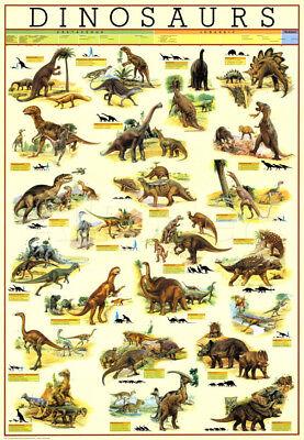 Dinosaur wall chart poster Size A2 (Dinosaurs Size Chart)