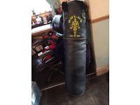 Golds Gym punch bag