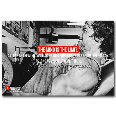 Arnold Schwarzenegger Bodybuilding Motivational Quotes Silk Poster 12X18 Inch