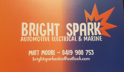 Qualified auto electrician