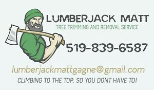 Tree Trimming and Removal Service