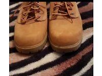 Women's Timberland Lyonsdale Oxford Shoes in WheatSize 6/39