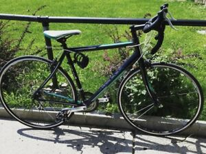 Marin Ravenna Road Bike for $500 still negotiable