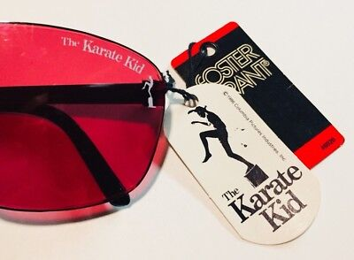 The Karate Kid-Daniel LaRusso Foster Grant Sunglasses VINTAGE RETRO KRAZY RARE!