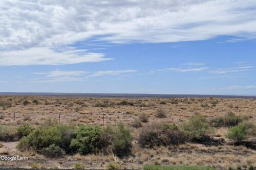 40 ACRES w/ROAD NEAR PETRIFIED FOREST NAT